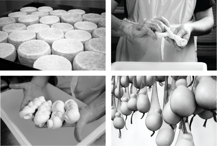Black and white photographs of cheese being made